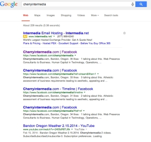 Sacrificing Google Search results in favor of Brand Consolidation.  The functional impacts...